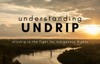 Understanding UNDRIP: Allyship in the fight for Indigenous Rights