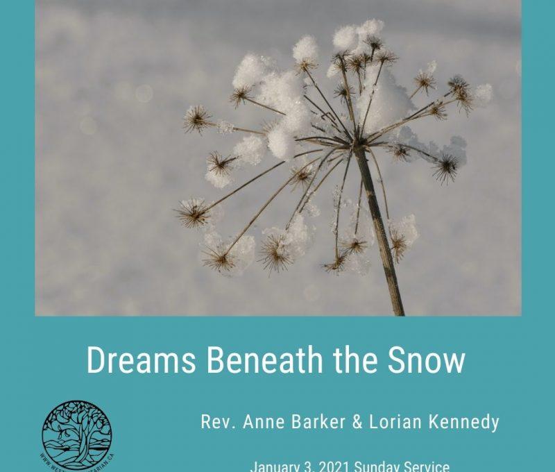 2021-01-03 Dreams Beneath the Snow 1080x1080