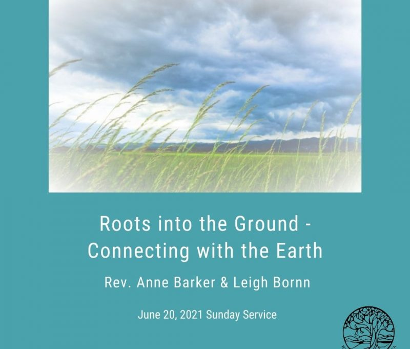 2021-06-20 Roots into the Ground 1080x1080