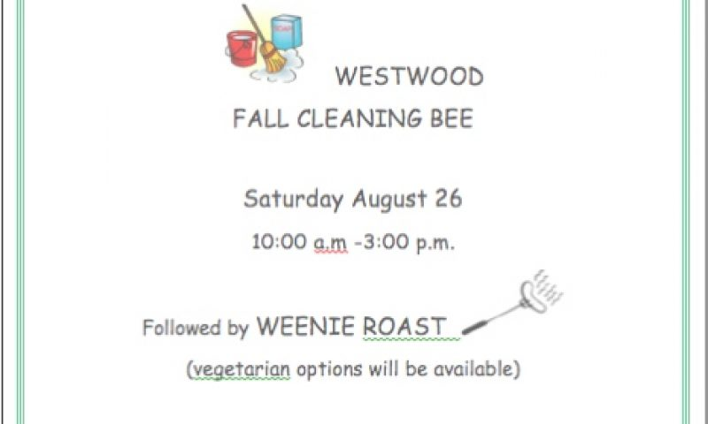 Fall Clean-Up