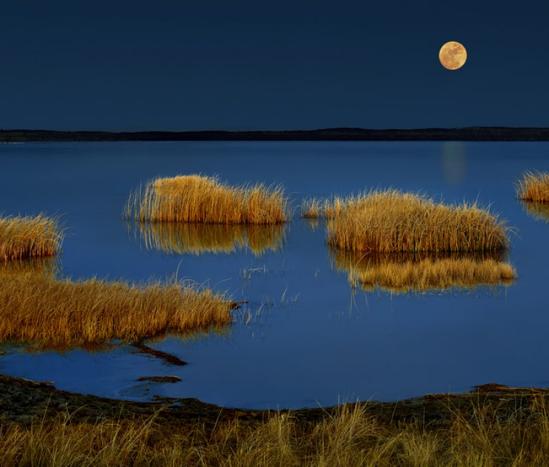 Moon Rise Over Joseph Lake AB by K. Jack Clark